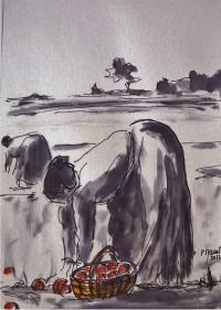 Ramassage des pommes / Encre et aquarelle / 30 x 45