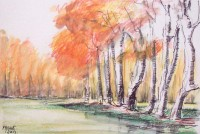 Rive en automne / Encre et aquarelle / 45 x 30
