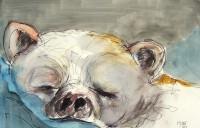 L'endormi / Aquarelle / 70 x 50