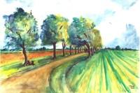 Le long du champs / Aquarelle / 70 x 50