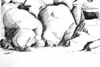 Chaos désertique / Encre / 70 x 50