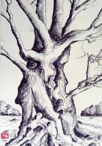 L'arbre travaillé / Encre / 65 x 50