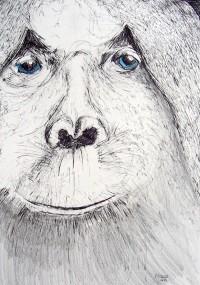 Gorille en portrait / Encres / 50 x 70