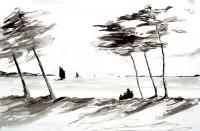 Marine aux pins / Encre / 70 x 50