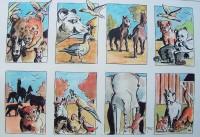 La compagnie des animaux / Aquarelle et encre / 70 x 50