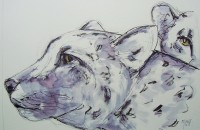 Les léopards / Encre et aquarelle / 70 x 50