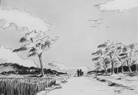 Promenade près des blés / Encre / 40 x 30