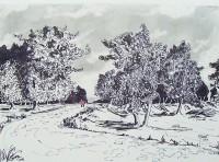 Promenade champêtre  / Encre / 40 x 30
