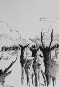 Attention! / Encre / 30 x 40