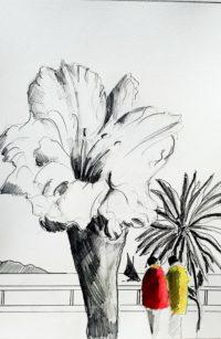 Quelle nature! / Encre et aquarelle / 50 x 70