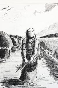 La glaneuse / Mines de plomb / 50 x 70