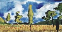 Champs de blé / Aquarelle / 40 x 30