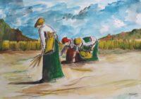 Glaneuses au travail / Aquarelle / 70 x 50
