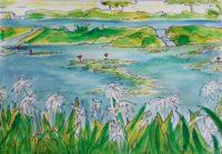 L'étang aux lys, phase 2 / Encre et aquarelle / 70 x 50